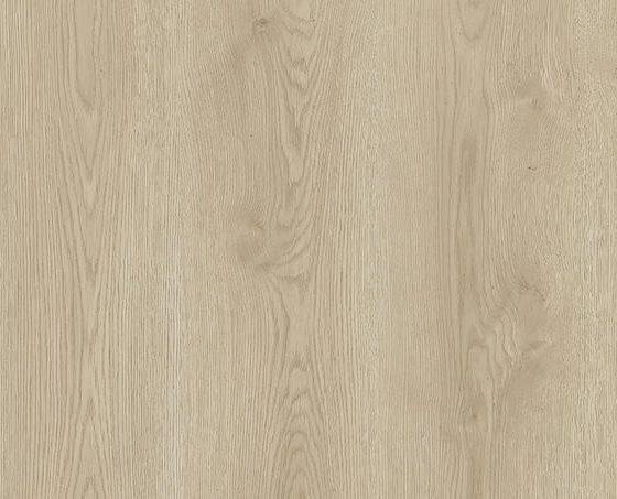 Contemporary Oak DUNE