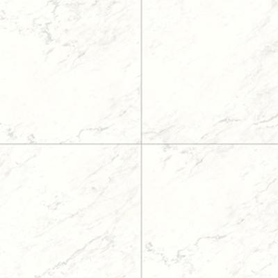 0761_Navajo-White